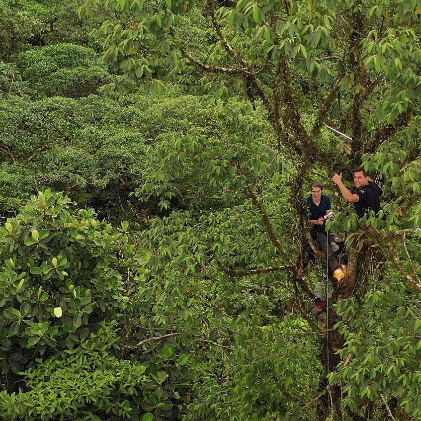 RFCx Technology monitors and protects Canande Reserve (Chocó Ecosystem)