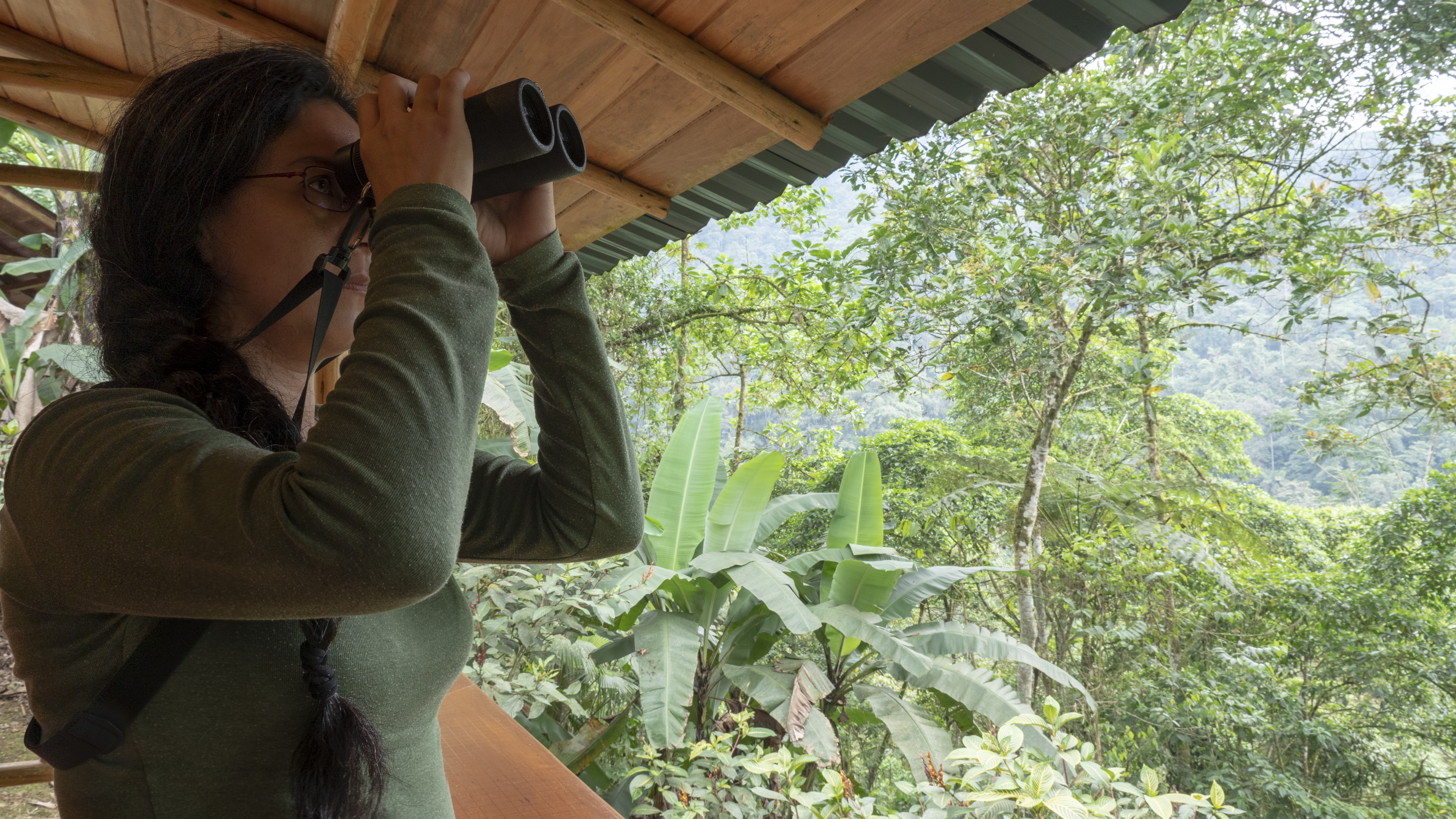 UMBRELLABIRD LODGE - BUENAVENTURA RESERVE